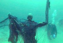 صورة أسرار البحر الغريبة