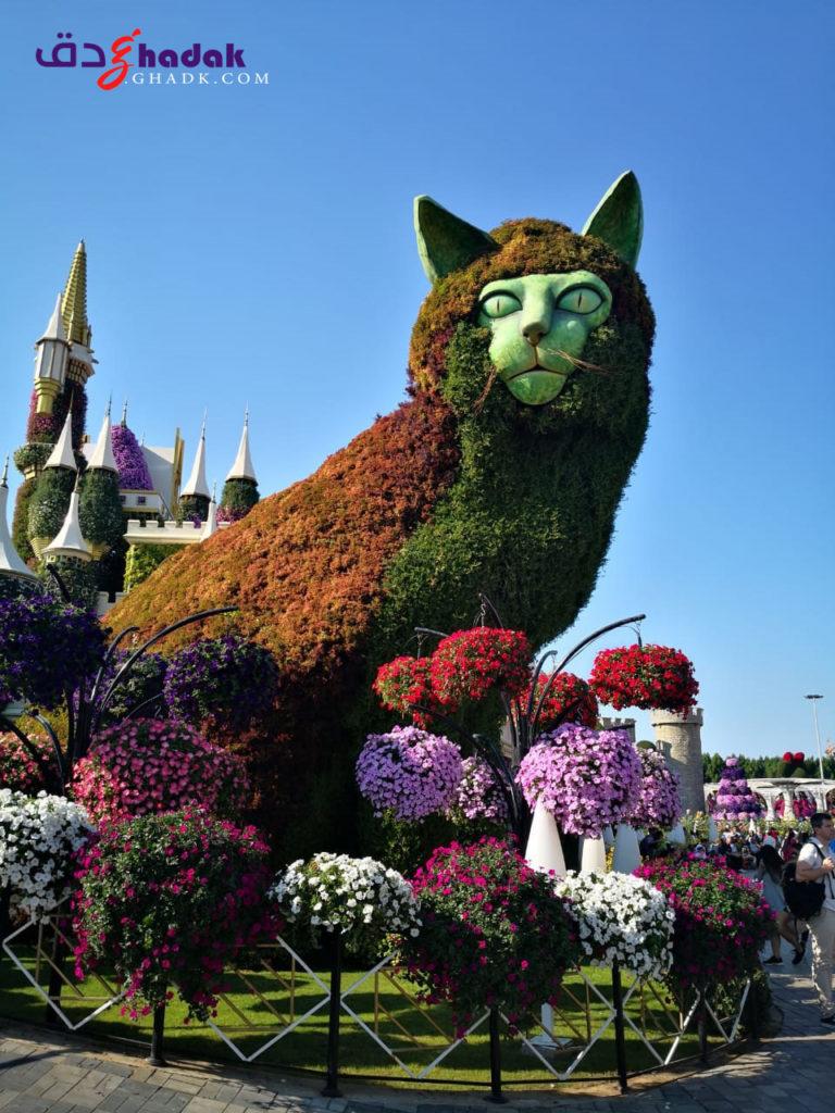 Dubai-Miracle-Garden حديقة الزهور دبي