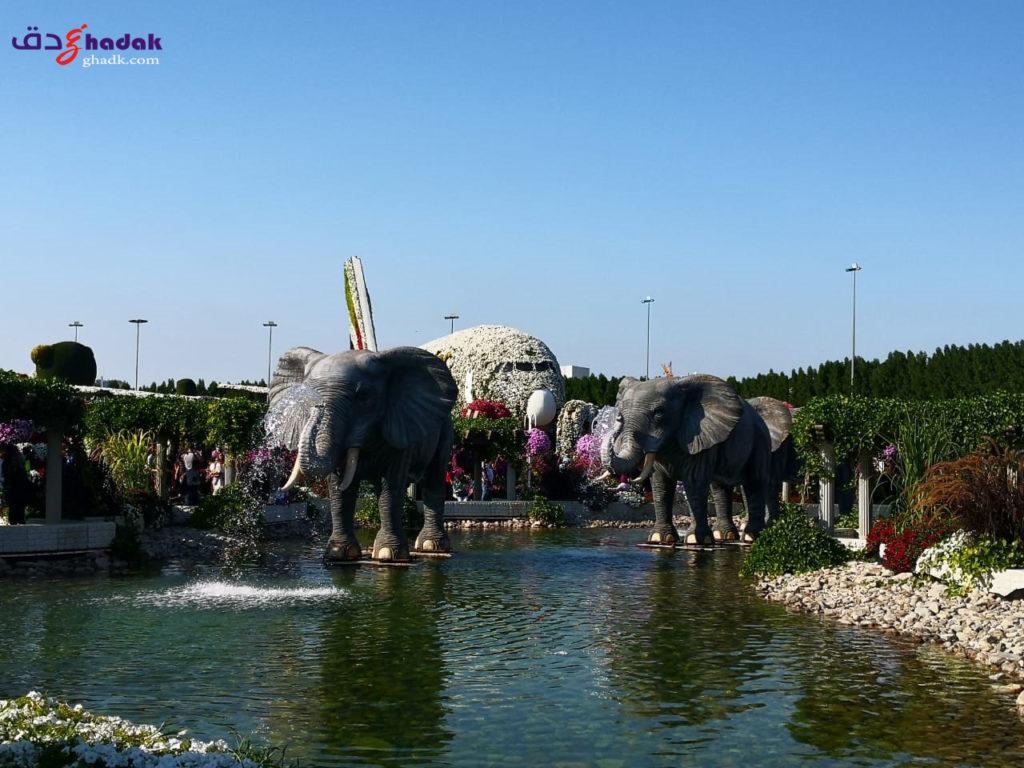 حديقة الزهور دبي 2020