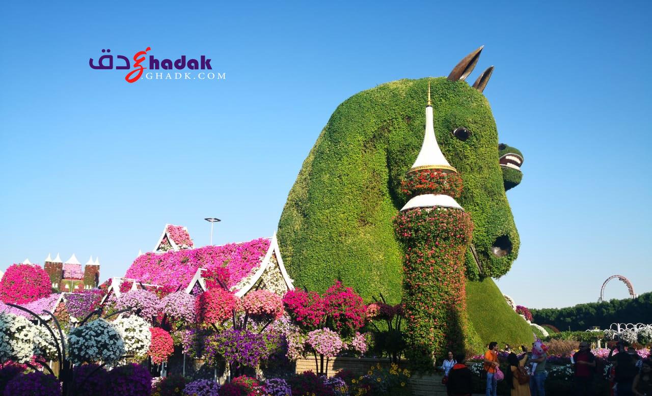 حديقة الزهور في دبي غدق حديقة الزهور في دبي الامارات العربية المتحدة