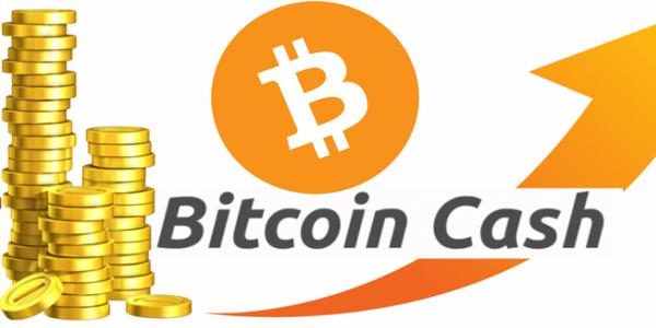 بيتكوين كاش Bitcoin Cash