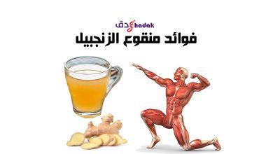 Photo of منقوع الزنجبيل وفوائده للجسم