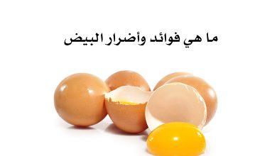 Photo of ما هي فوائد وأضرار البيض