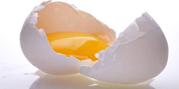 هل يحتوي البيض على الكالسيوم