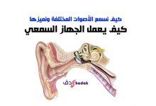 Photo of كيف يعمل الجهاز السمعي