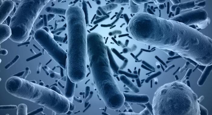 كيف تعمل البكتيريا على سطح الجلد