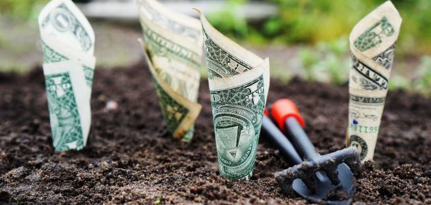 دروس تساعدنا لتحسين علاقتنا بالمال