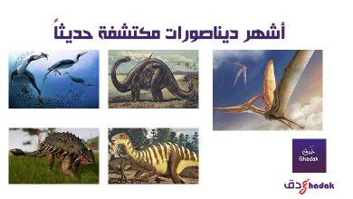 صورة أشهر ديناصورات مكتشفة حديثاً