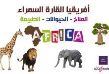 أفريقيا القارة السمراء مناخها وحيوانتها