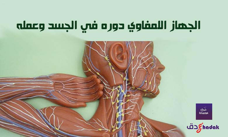 الجهاز اللمفاوي دوره في الجسد وعمله