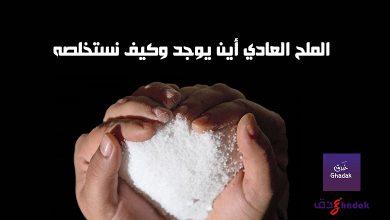 صورة الملح العادي أين يوجد وكيف نستخلصه