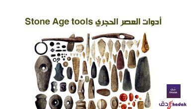 أدوات العصر الحجري Stone Age tools