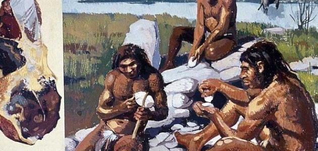 أنماط الحياة في العصر الحجري