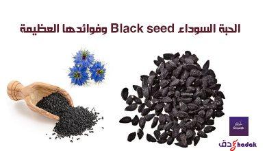 الحبة السوداء Black seed وفوائدها العظيمة