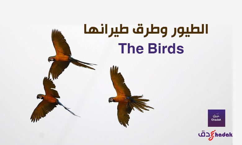 الطيور وطرق طيرانها The Birds