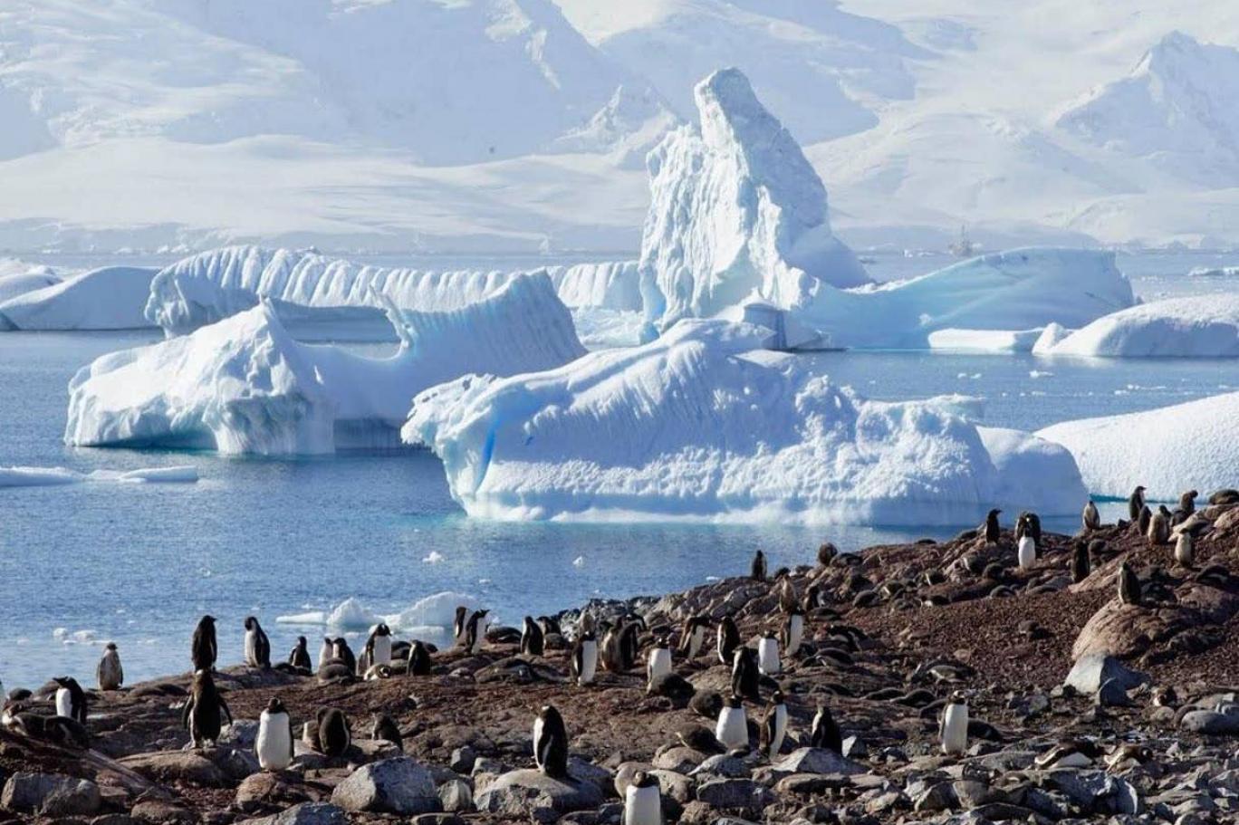 المناطق القطبية الجنوبية