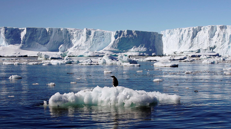 تأثير التغير المناخي على المناطق القطبية