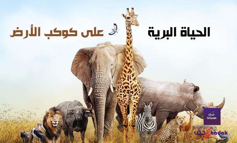 الحياة البرية على كوكب الأرض