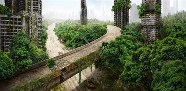 أثر اختفاء البشر على المدن والصناعة